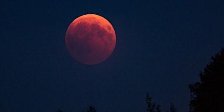 Full Moon Max Meditation *Virtual* tickets