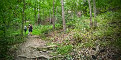 Forest Bathing Walk at Bull Run Mountains Natural Area Preserve tickets
