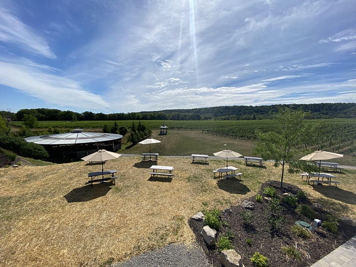 Yoga in the Vineyard with  Mimosa, Hike, Healthy Lunch + Wine image