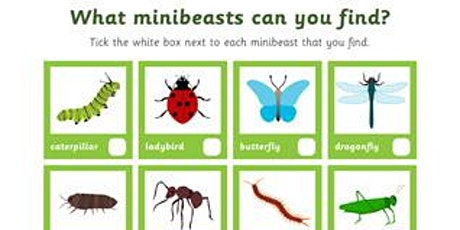 Mini Beast Hunt and Making Clay Creatures tickets