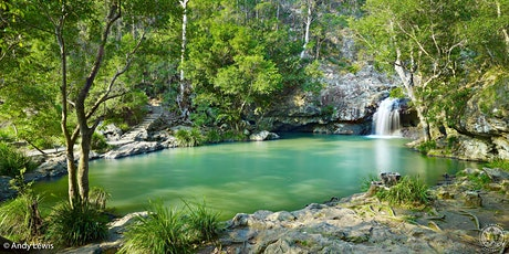 Kondalilla Falls to Baroon Pocket Dam Walk tickets