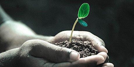 Tree planting day Moruya Library Gardens tickets