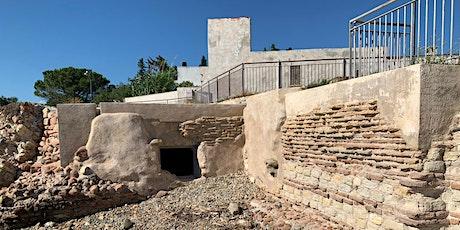 Tramonto alla Villa romana - Tra la collina e il mare tour tickets