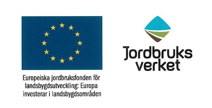 Lansering av WWFs Baltic Stewardship Initiative bild