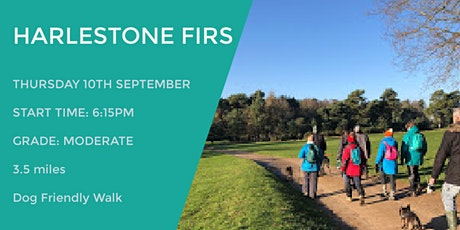 HARLESTONE FIRS | 3.5 MILES | EASY | NORTHANTS tickets
