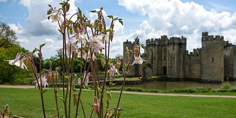 Timed entry at Bodiam Castle (17 August - 23  August) tickets
