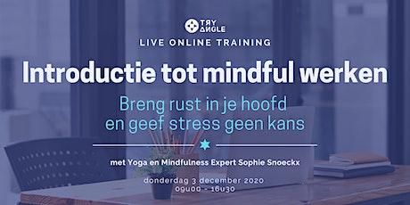Introductie tot mindful werken tickets