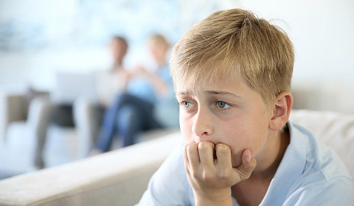 Virtual School: Addressing Anxiety, Attention, Behavior, and Motivation image