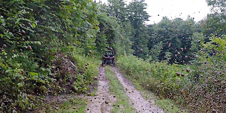 Adirondacks Small-Group Shuttle to Extreme ATV, Ziplining + Natural Pool tickets
