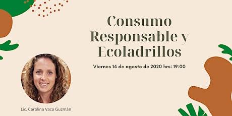 Consumo Responsable y Ecoladrillos entradas