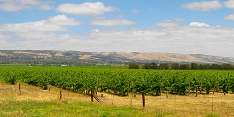 Free 1 on 1 EFS sessions - initial meeting or Get Stuff Done @ McLaren Vale tickets