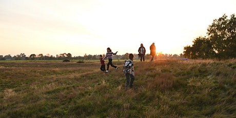 Timed entry to Sutton Hoo (17 August - 23 August) tickets