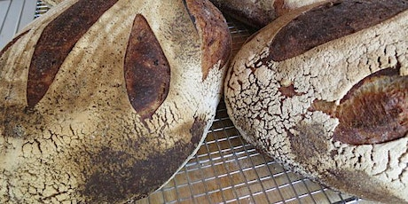 CANCELED Woodfired Sourdough Adventure at Brot Bakehouse tickets