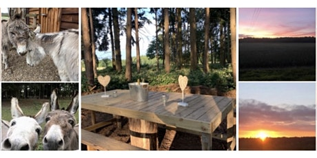 Fairytale Forest Private Hire - Sunset Walk & Alfresco Dining by Fairylight tickets