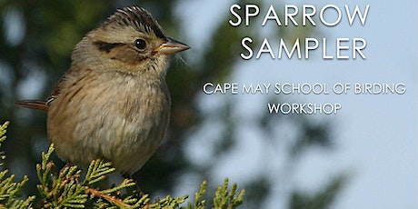 Sparrow Sampler tickets