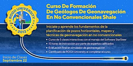 Curso de Formación para Geonavegadores en No Convencionales Shale. entradas