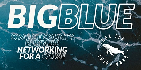 Big Blue Networking tickets