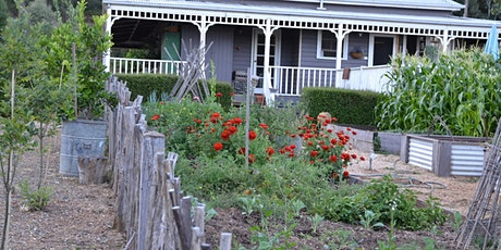 Introduction to Homesteading Basics #4 tickets
