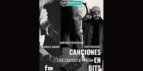 Canciones en Bits- Adriana Primavera, Pepe Gallicot y Russell Amhir entradas