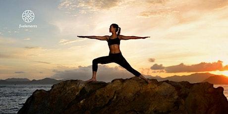 Fivelements  Livestream Vinyasa Yoga Level 1 By  Ankie Beilke tickets