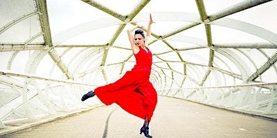 Vrijburcht theater / NL / Solo Flamenco / 20.00