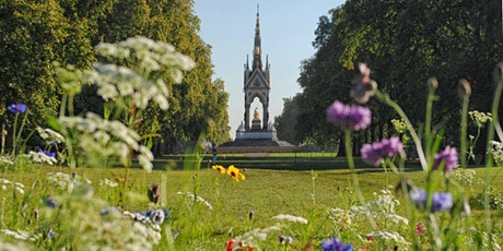 Virus Safe Outdoor Hyde Park London Treasure Hunt tickets