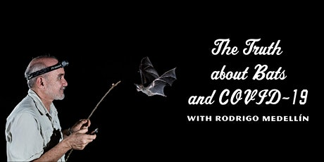 Rodrigo Medellín on The Truth about Bats and COVID-19 tickets