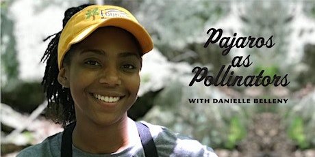 Pajaros as Pollinators with Danielle Belleny tickets