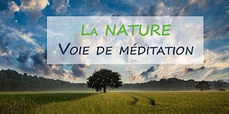 La nature, voie de méditation billets