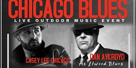 Dan Aykroyd performing at outdoor blues event-mike wheelers band and more tickets
