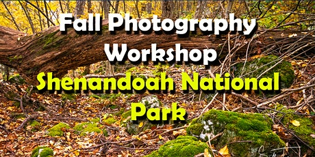 Photography Workshop - Fall Foliage in Shenandoah National Park (2 days) tickets