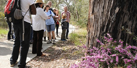 Wildflower and Watercolours - Wildflower Walk tickets