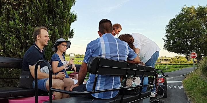 Immagine Tour in carrozza a cavallo con apericena e degustazione vini