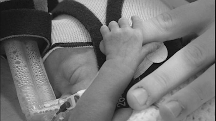 Newborn Behavioural Observations (NBO) ONLINE Training - AUGUST 2021 image