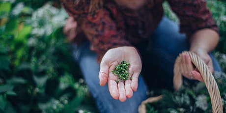 Private Foraging Session, Plymouth tickets