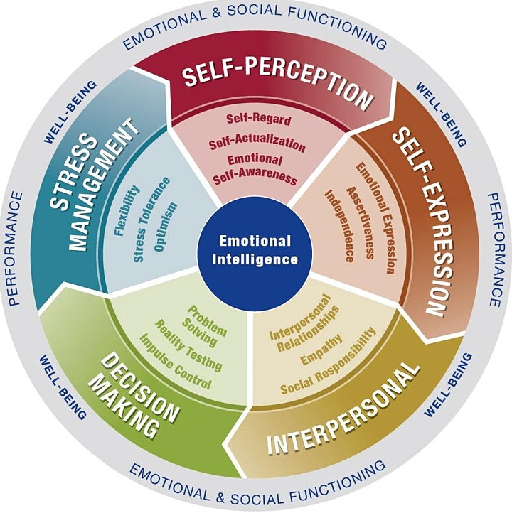 Emotional Intelligence: Online EQ-i 2.0 and EQ 360 Certification image