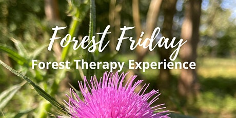 Forest Friday - Woodland Wellness tickets