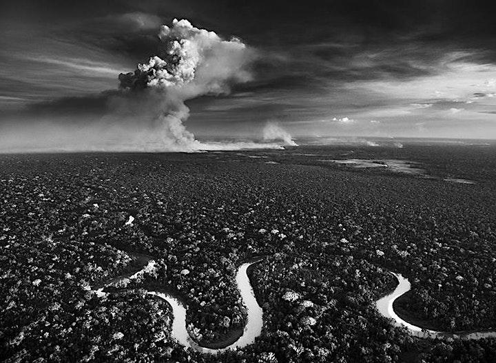 "Image pour Exposition du photographe Sebastião SALGADO - ""BLESSURE"""