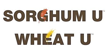 Sorghum U-Wheat U
