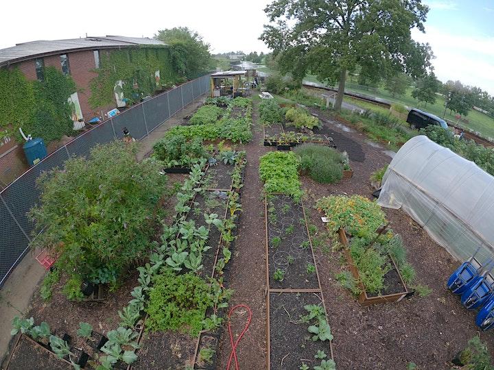 Get Outside!  in GrowNYC's Teaching Garden image