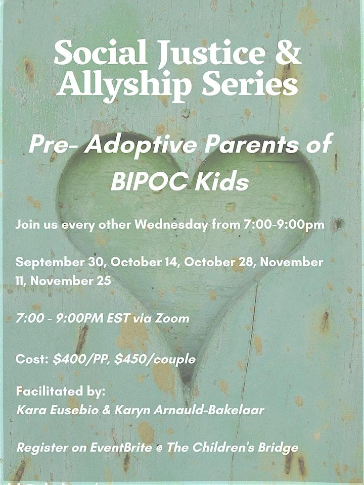 Pre-Adoptive Parents of BIPOC Kids: Social Justice & Allyship Series image