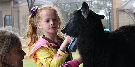 Girl Scout Program: Daisy Journey 3 Cheers for Animals! tickets