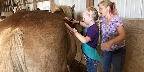Junior Girl Scout Horseback Riding Badge Virtually tickets