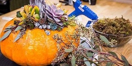 Fall Class--Pumpkins filled with Succulents and Flowers $30 tickets