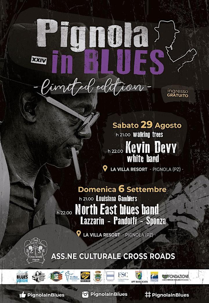 Immagine Pignola in Blues XXIV° -  Limited Edition 2020