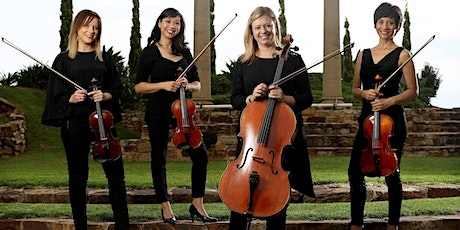 Spring Concert Series Live  | Amicus Strings tickets