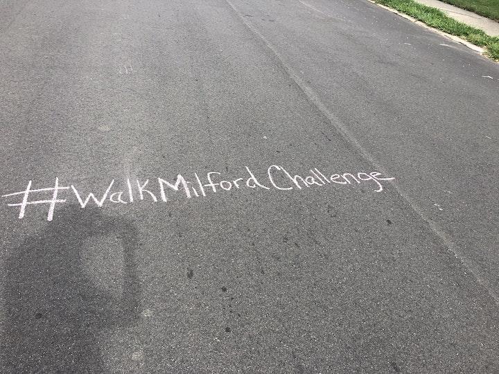 Walk Milford Challenge 3 image