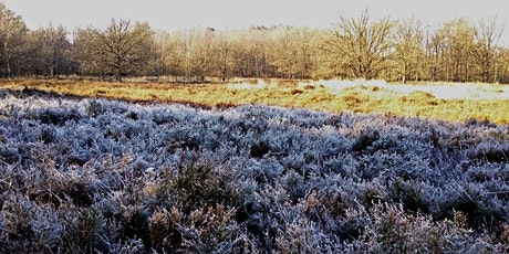 Winterwandeling over de heide tickets