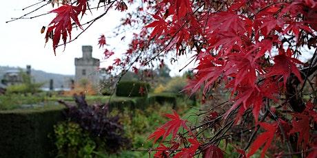 Visit Lismore Castle Gardens & Gallery - September tickets