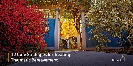 12 Core Strategies for Treating Traumatic Bereavement tickets